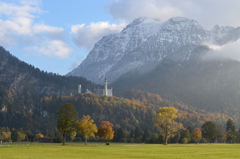 Neuschwanstein meadow 2
